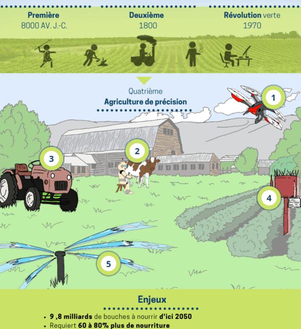 Infographie évolution de l'agriculture